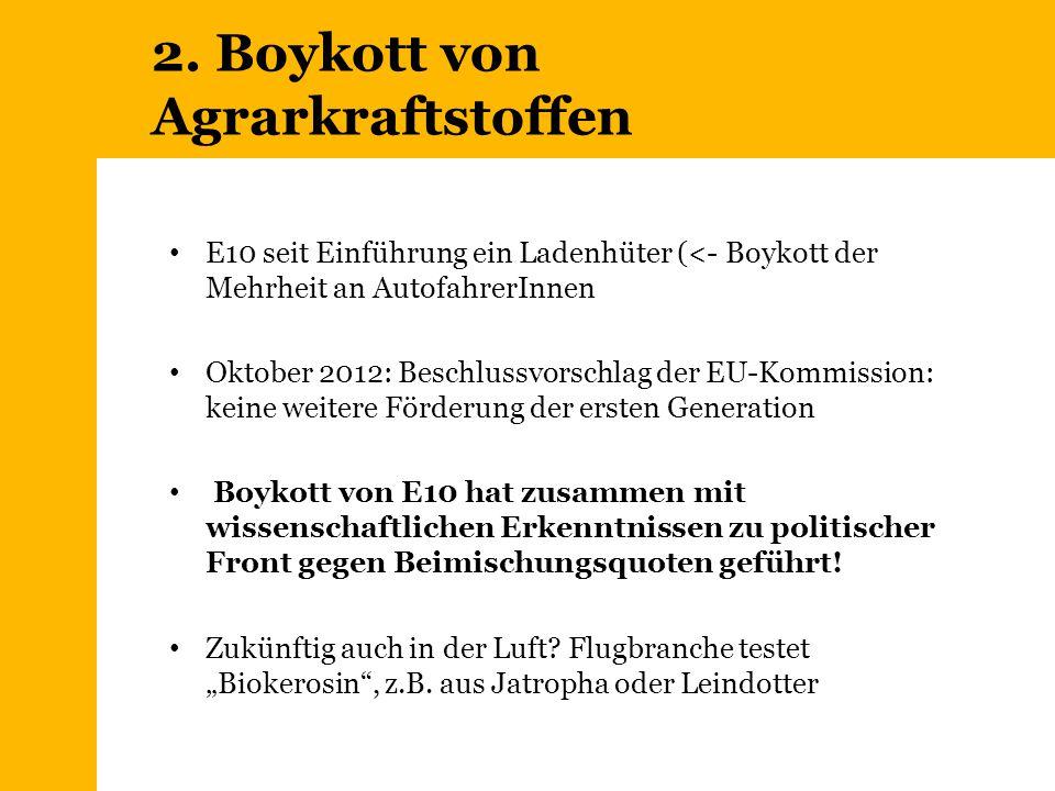 2. Boykott von Agrarkraftstoffen