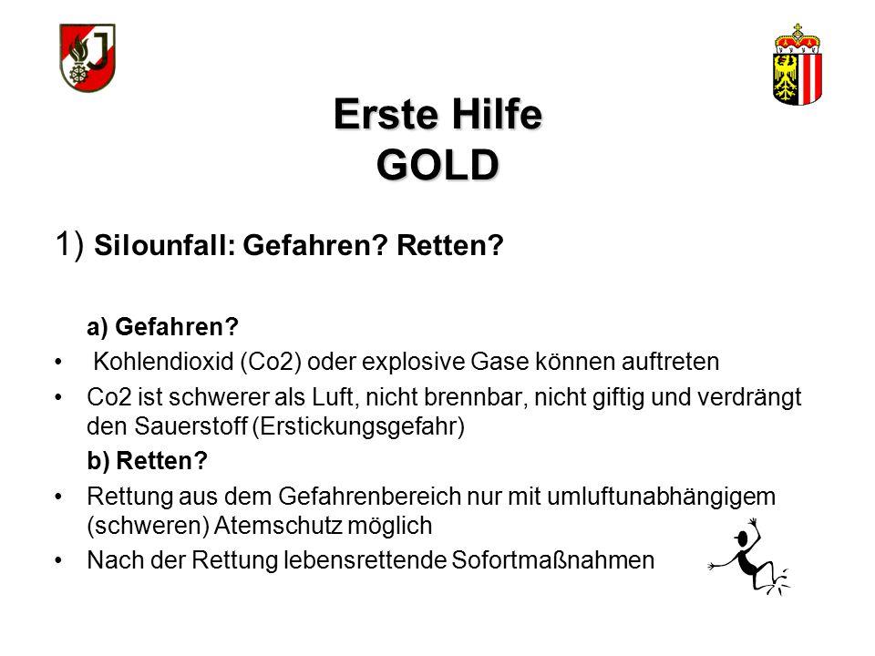 Erste Hilfe GOLD 1) Silounfall: Gefahren Retten a) Gefahren