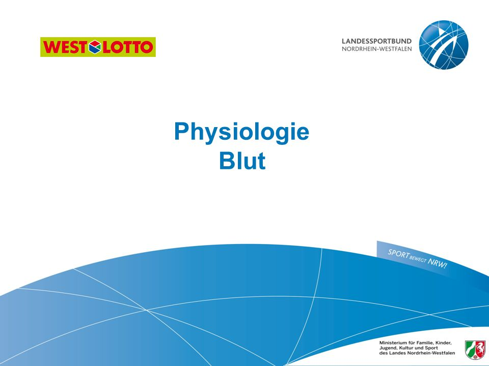 Physiologie Blut ​