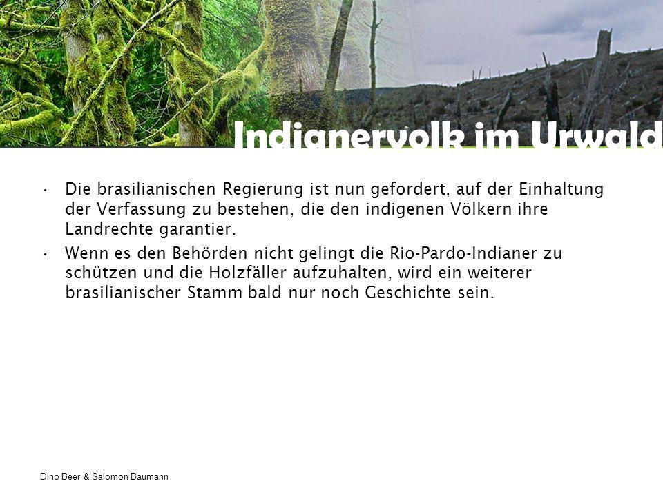 Indianervolk im Urwald