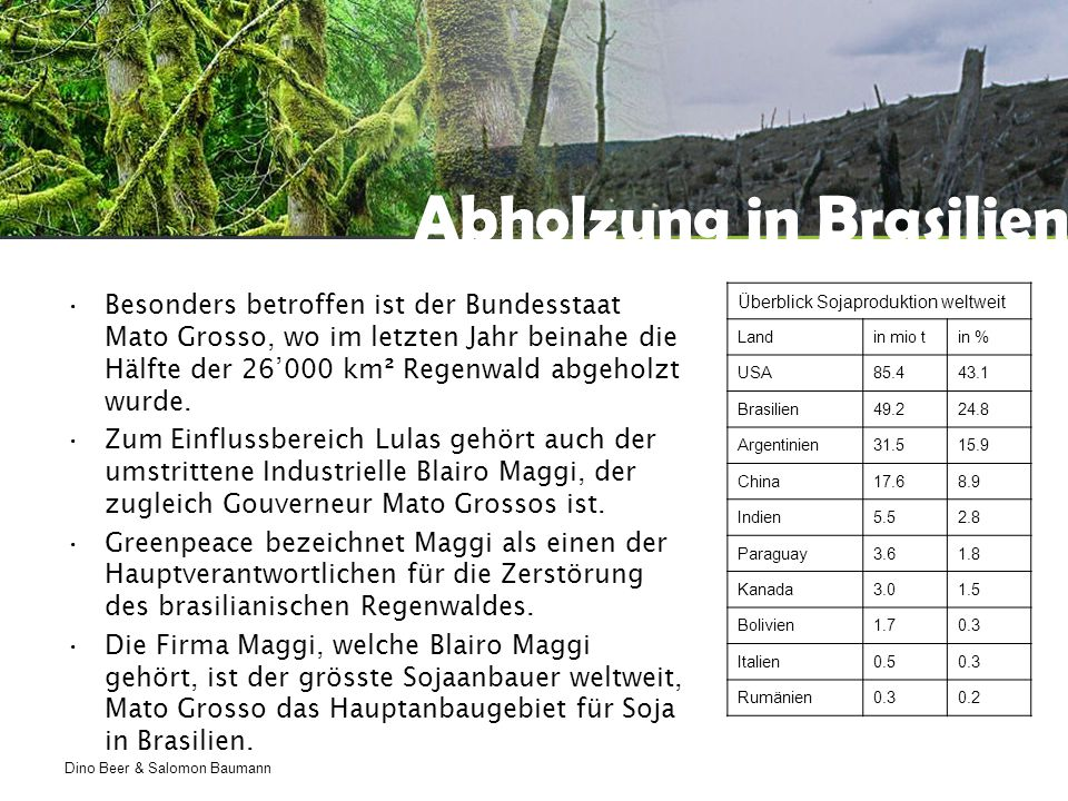 Abholzung in Brasilien