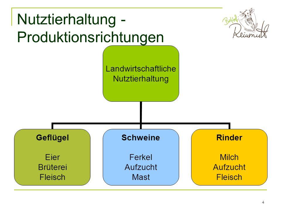 Nutztierhaltung - Produktionsrichtungen