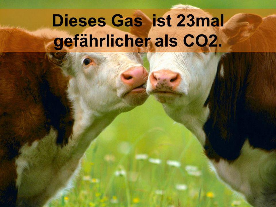 Dieses Gas ist 23mal gefährlicher als CO2.