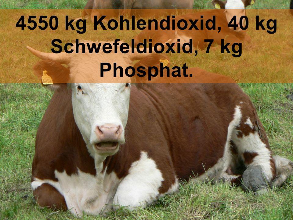 4550 kg Kohlendioxid, 40 kg Schwefeldioxid, 7 kg Phosphat.