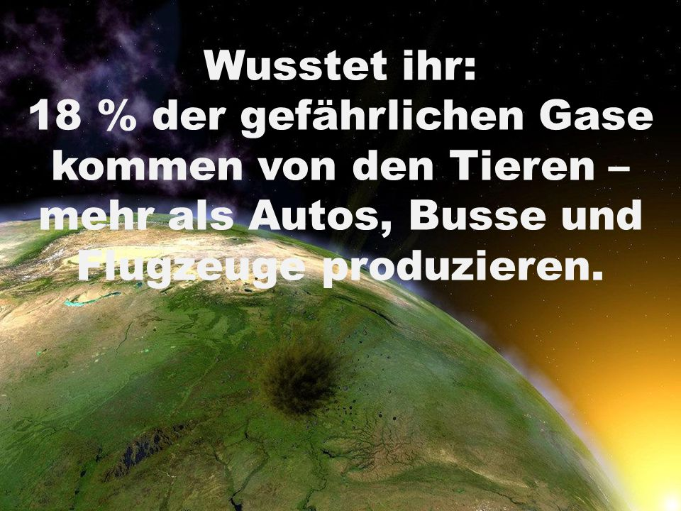 Wusstet ihr: 18 % der gefährlichen Gase kommen von den Tieren – mehr als Autos, Busse und Flugzeuge produzieren.