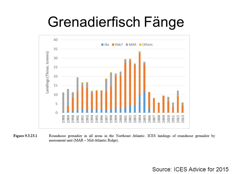 Grenadierfisch Fänge Source: ICES Advice for 2015
