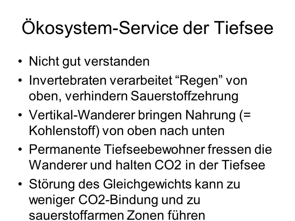 Ökosystem-Service der Tiefsee