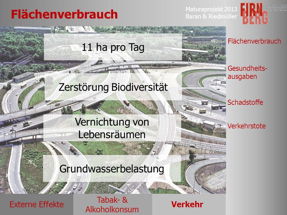 Flächenverbrauch 11 ha pro Tag Zerstörung Biodiversität