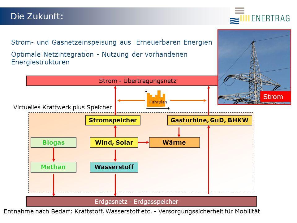 Die Zukunft: Strom- und Gasnetzeinspeisung aus Erneuerbaren Energien