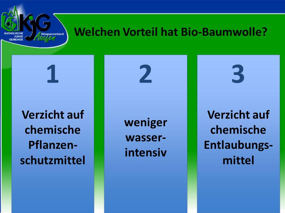 Welchen Vorteil hat Bio-Baumwolle