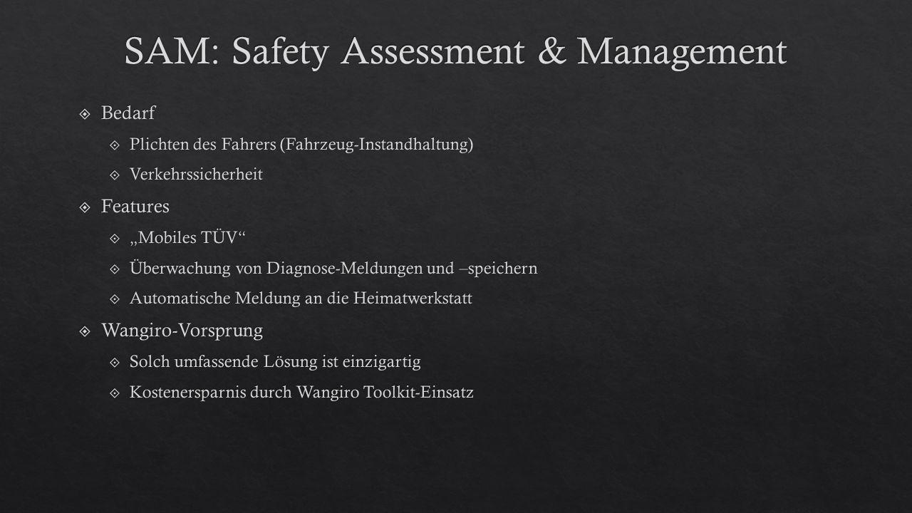 SAM: Safety Assessment & Management