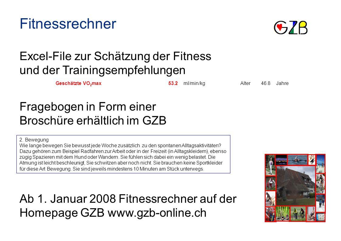 Fitnessrechner Excel-File zur Schätzung der Fitness und der Trainingsempfehlungen. Geschätzte VO2max.