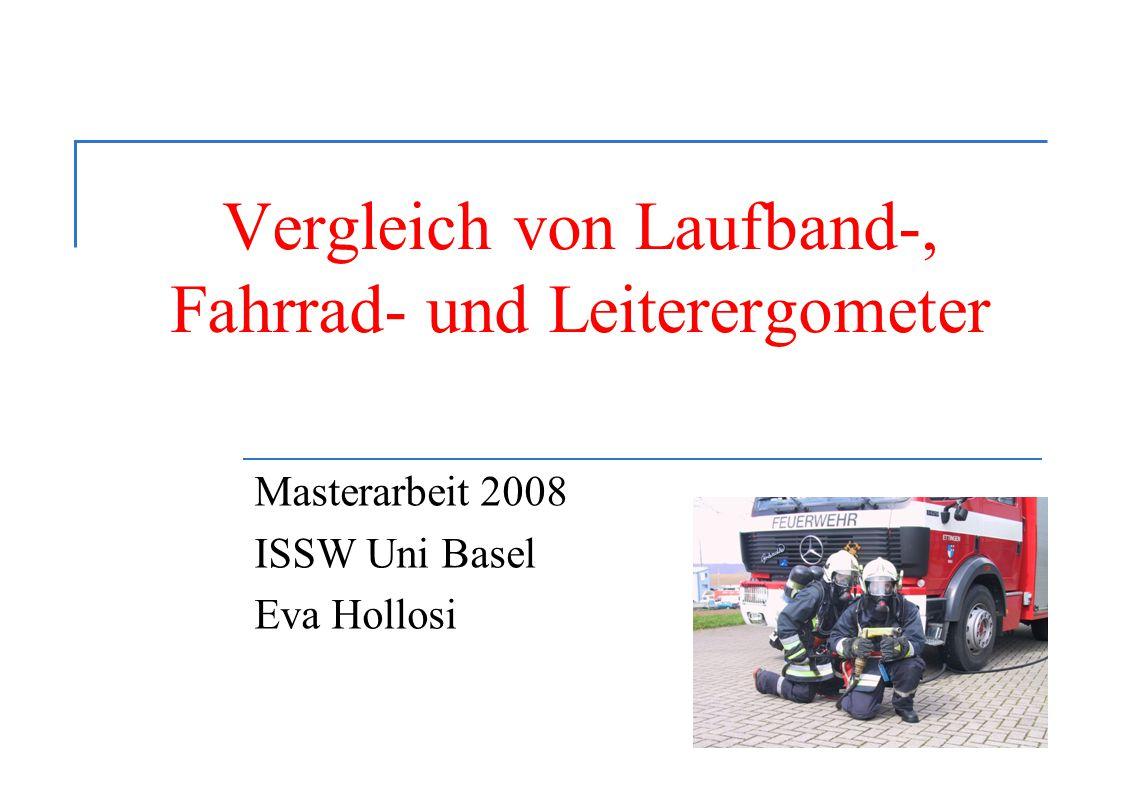Masterarbeit 2008 ISSW Uni Basel Eva Hollosi