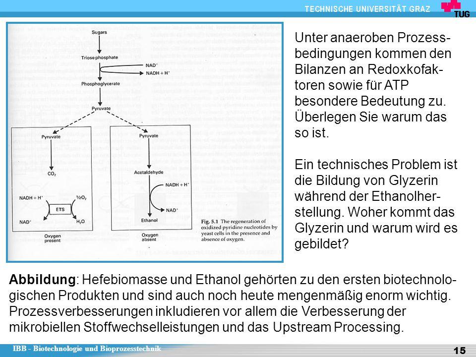 Unter anaeroben Prozess-bedingungen kommen den Bilanzen an Redoxkofak-toren sowie für ATP besondere Bedeutung zu.
