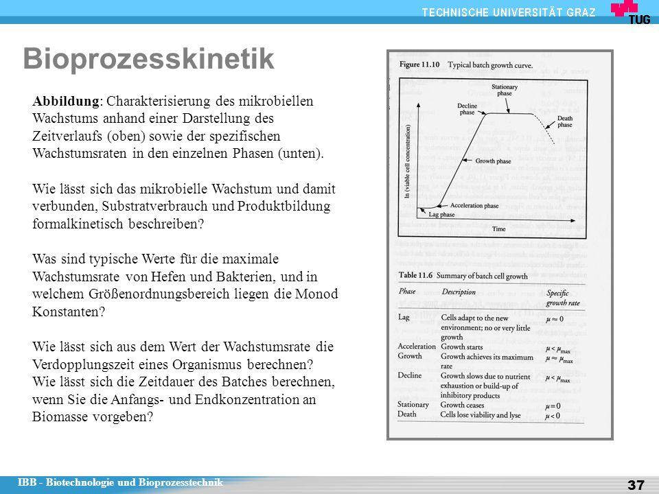 Bioprozesskinetik
