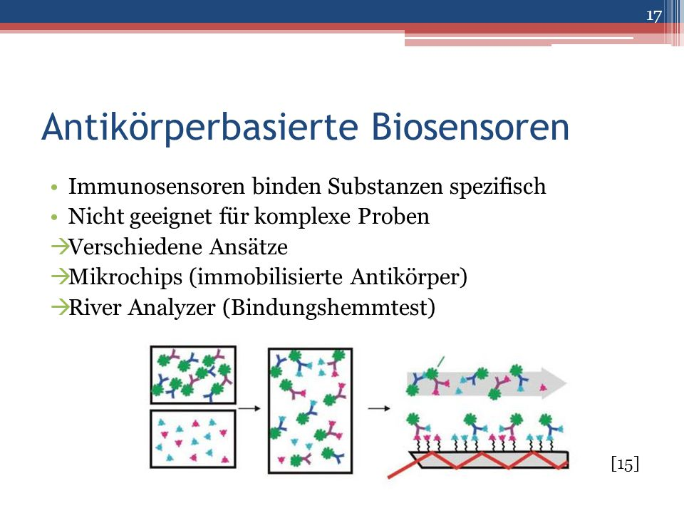 Antikörperbasierte Biosensoren