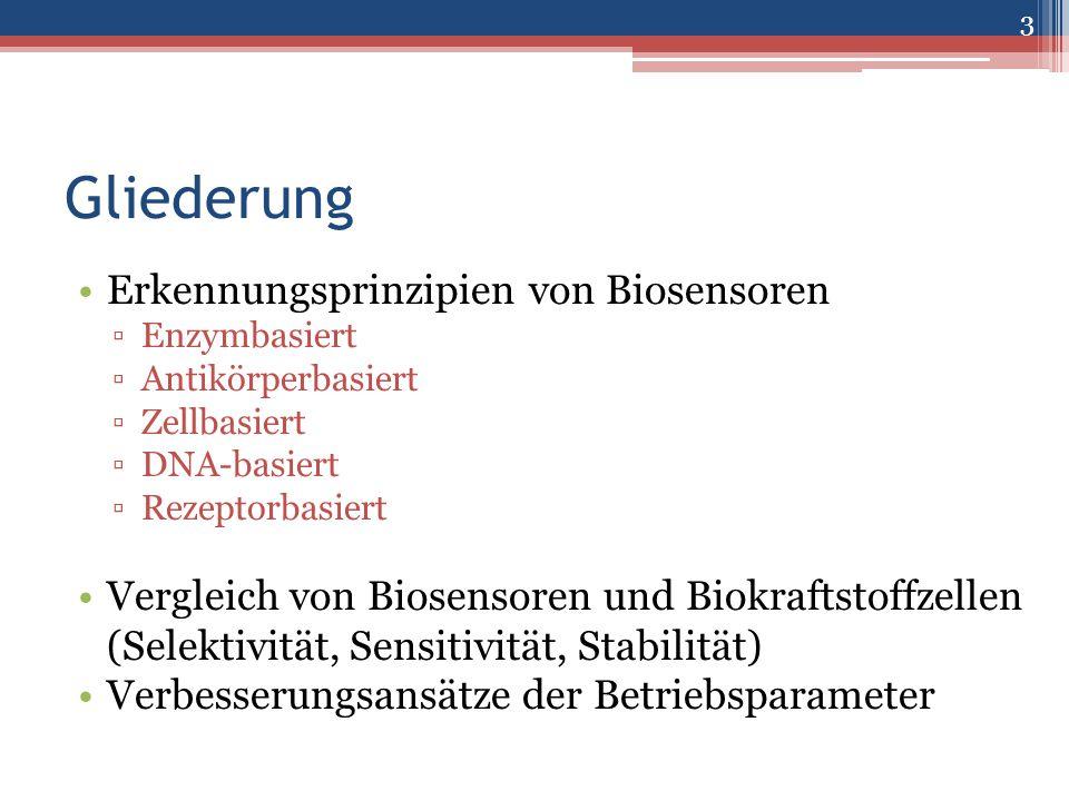 Gliederung Erkennungsprinzipien von Biosensoren
