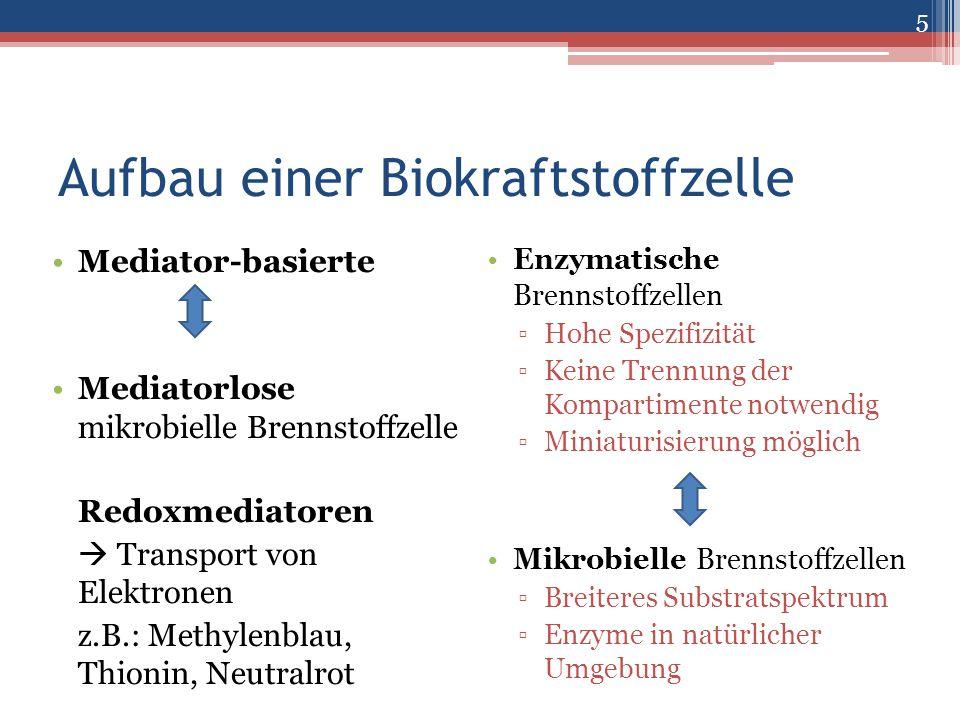 Aufbau einer Biokraftstoffzelle