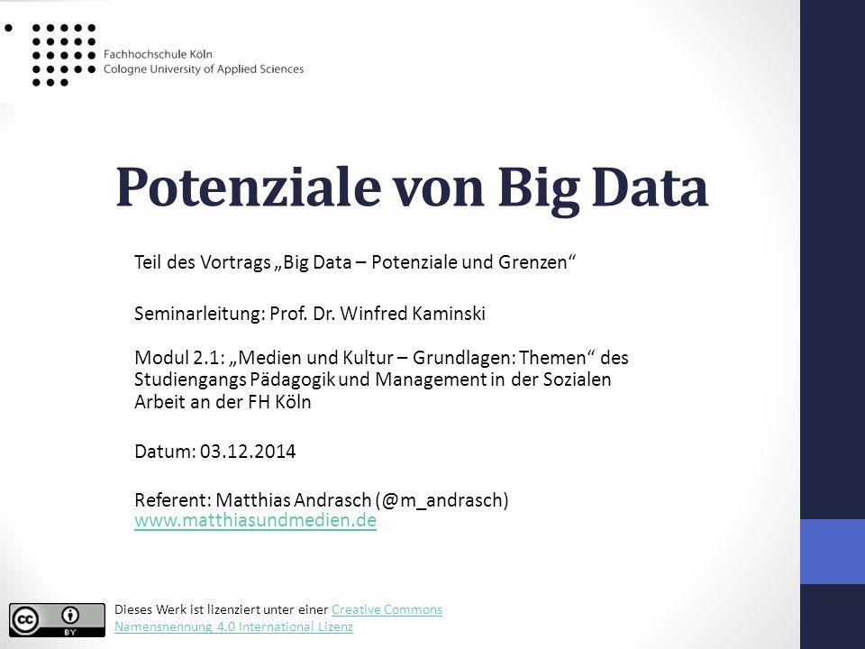 Potenziale von Big Data