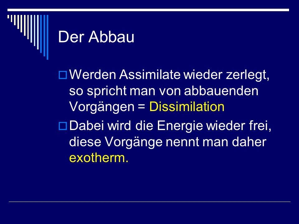 Der Abbau Werden Assimilate wieder zerlegt, so spricht man von abbauenden Vorgängen = Dissimilation.