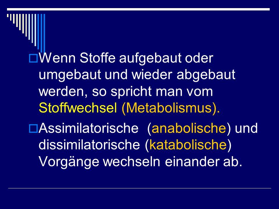 Wenn Stoffe aufgebaut oder umgebaut und wieder abgebaut werden, so spricht man vom Stoffwechsel (Metabolismus).