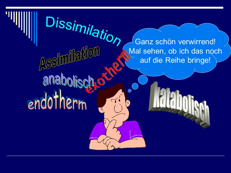 Dissimilation Assimilation exotherm anabolisch endotherm katabolisch