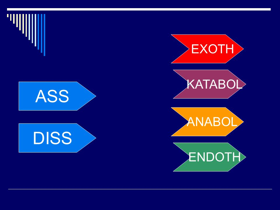 EXOTH KATABOL ASS ANABOL DISS ENDOTH