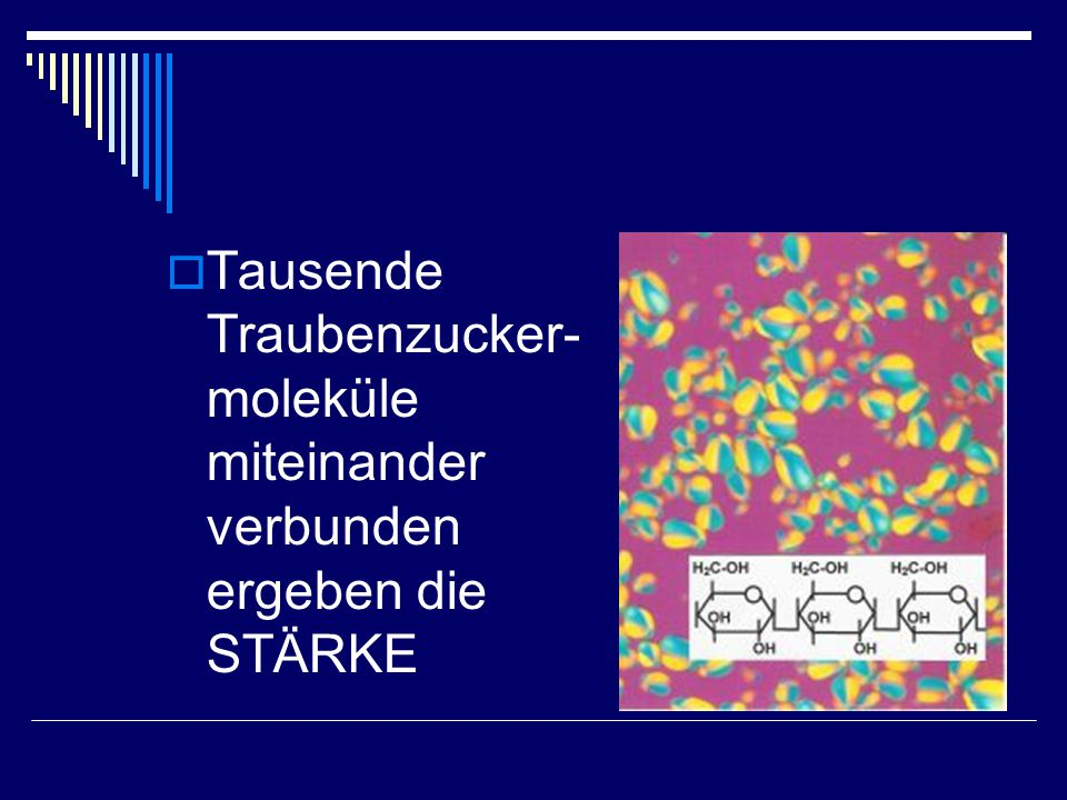 Tausende Traubenzucker-moleküle miteinander verbunden ergeben die STÄRKE