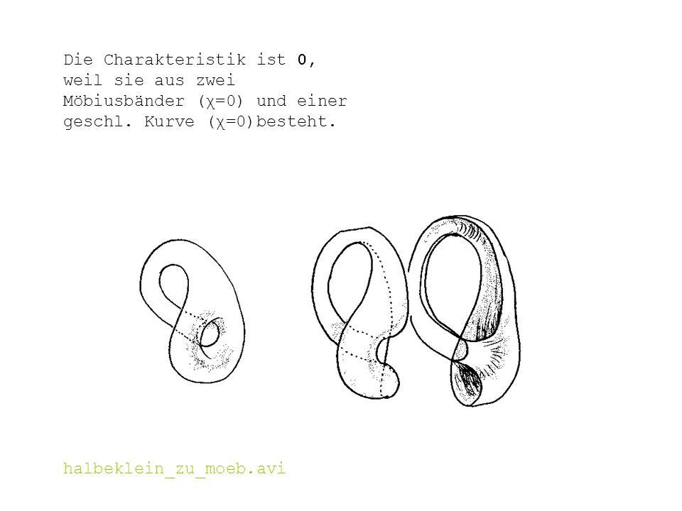 Die Charakteristik ist 0, weil sie aus zwei Möbiusbänder (χ=0) und einer geschl. Kurve (χ=0)besteht.