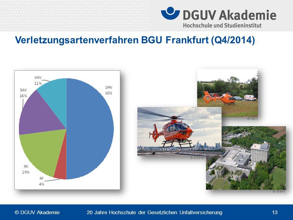Verletzungsartenverfahren BGU Frankfurt (Q4/2014)