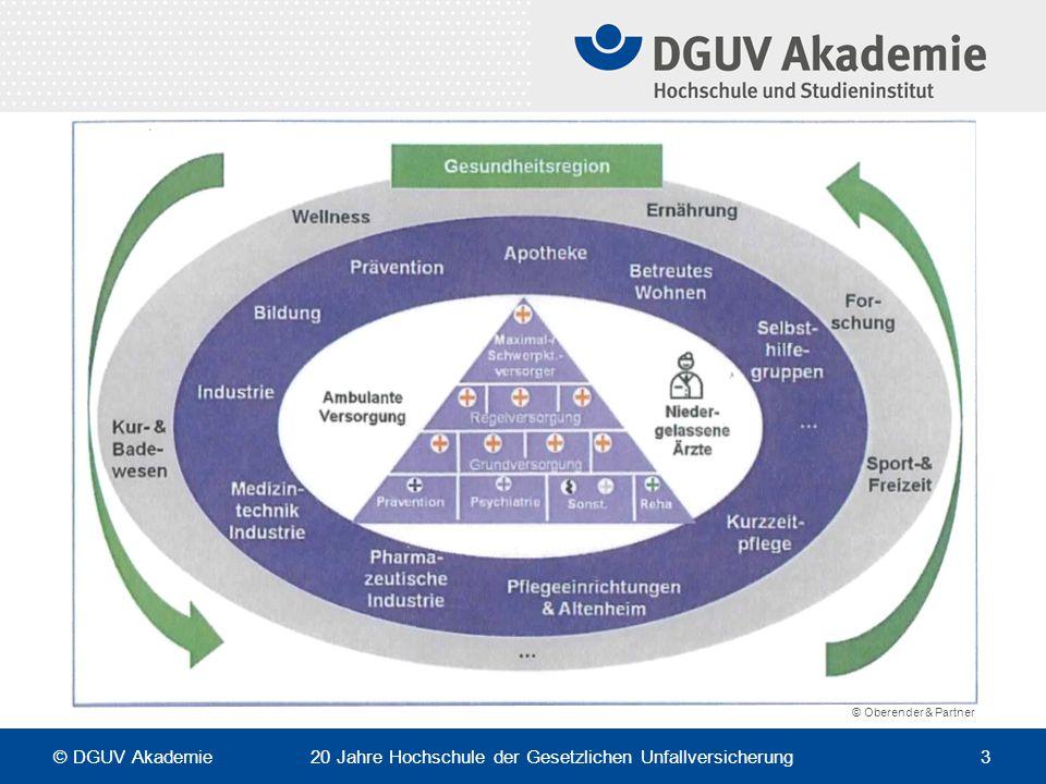 von der institutionellen Betrachtung zur sektoralen Betrachtung einer Gesundheitsregion – übersichtlichere Dimensionen …