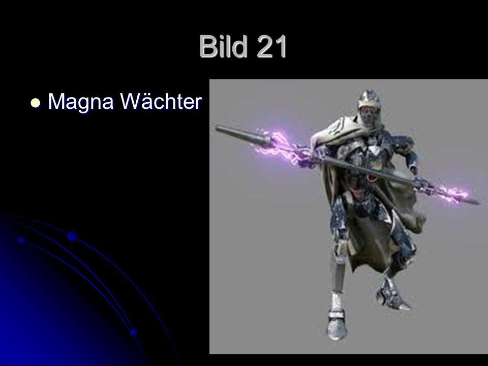 Bild 21 Magna Wächter