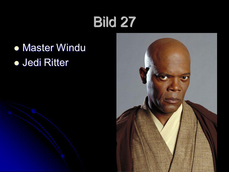 Bild 27 Master Windu Jedi Ritter