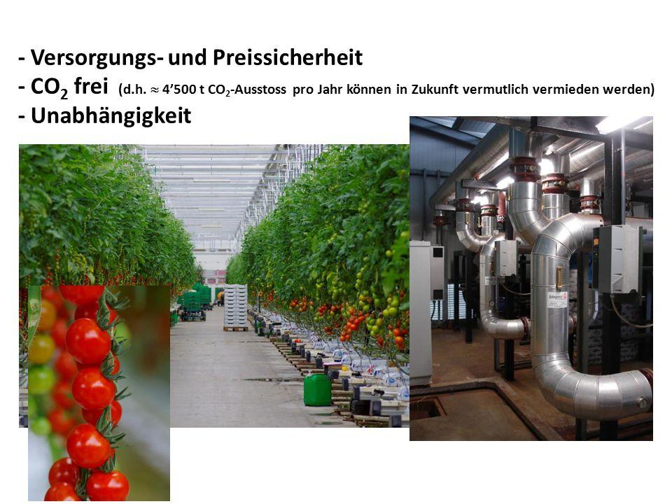 - Versorgungs- und Preissicherheit - CO2 frei (d. h