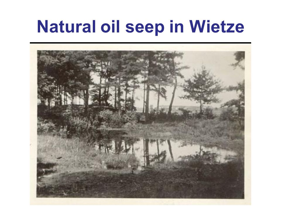 Natural oil seep in Wietze