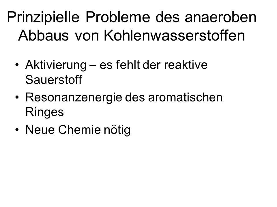 Prinzipielle Probleme des anaeroben Abbaus von Kohlenwasserstoffen