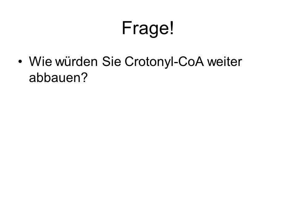 Frage! Wie würden Sie Crotonyl-CoA weiter abbauen
