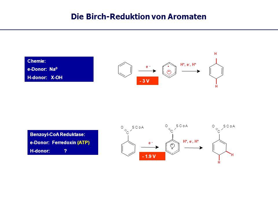 Die Birch-Reduktion von Aromaten