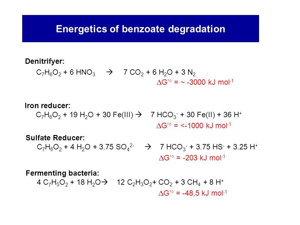 Energetics of benzoate degradation
