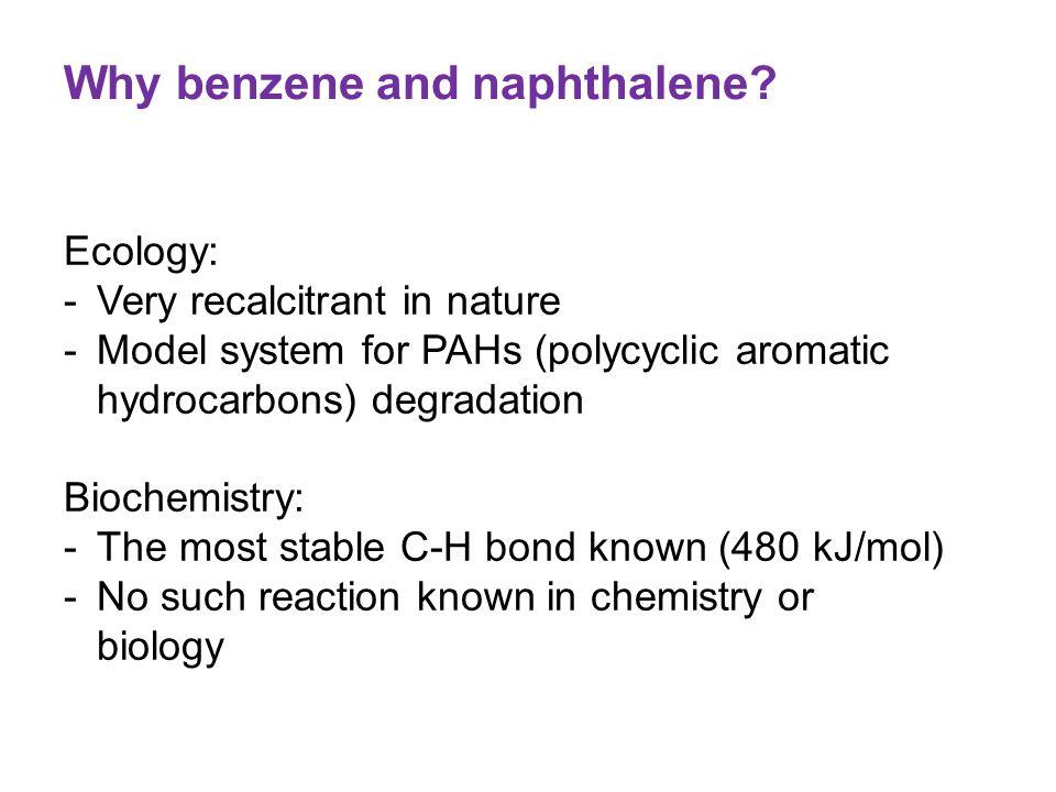 Why benzene and naphthalene