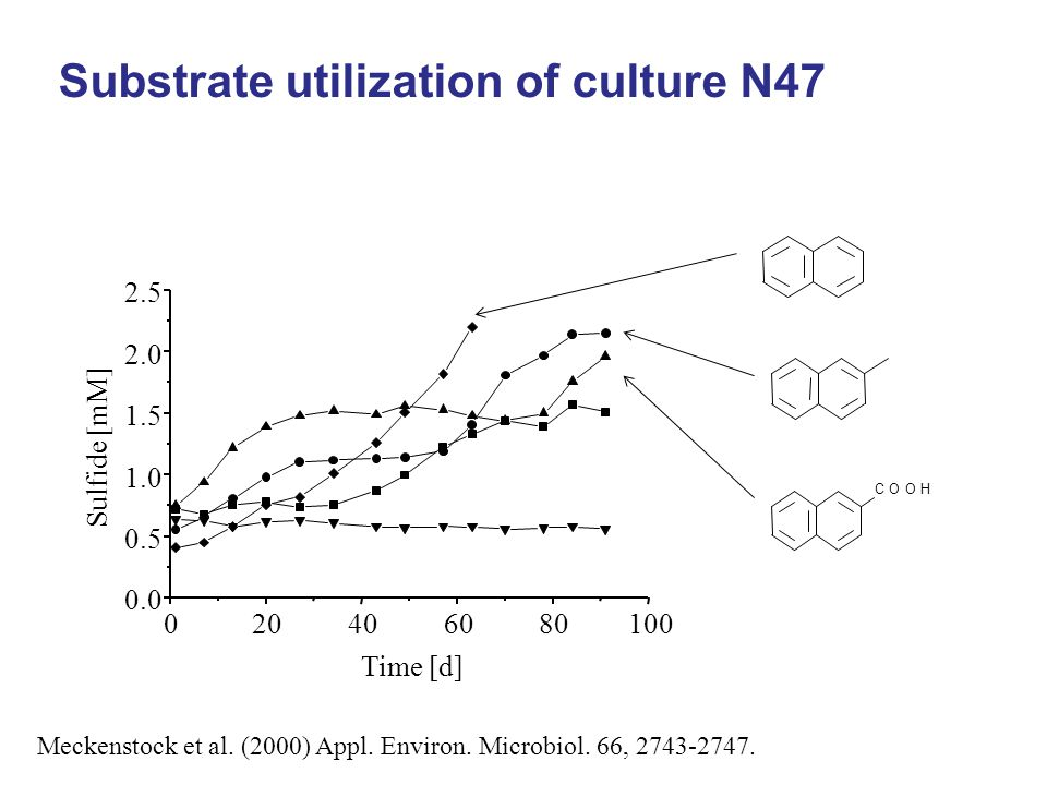 Substrate utilization of culture N47