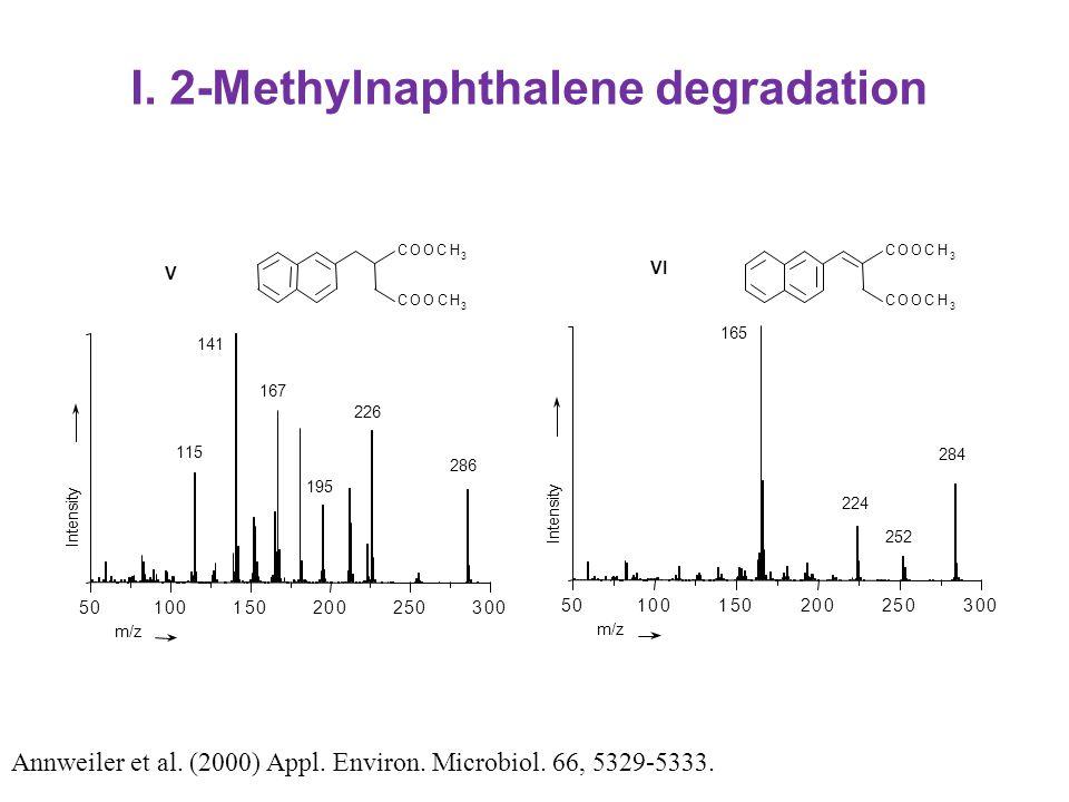 I. 2-Methylnaphthalene degradation