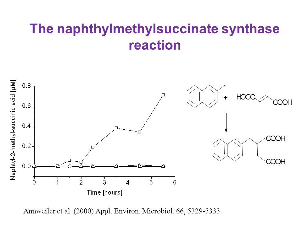 The naphthylmethylsuccinate synthase reaction