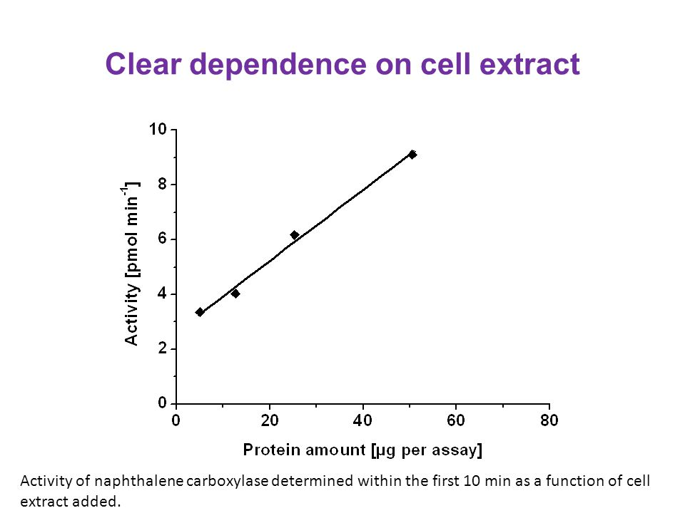 Clear dependence on cell extract