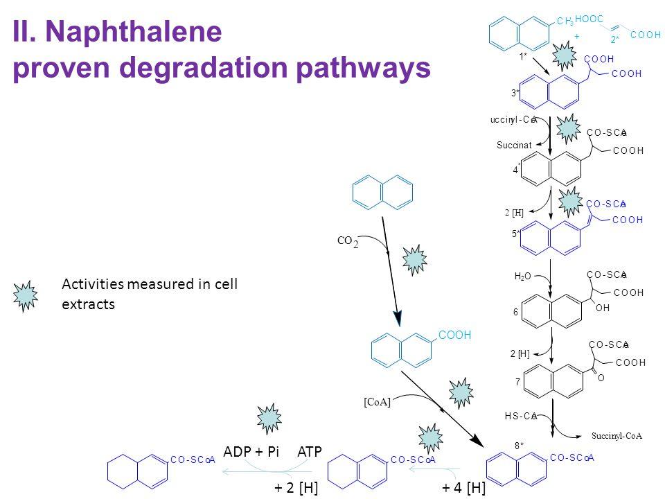 proven degradation pathways