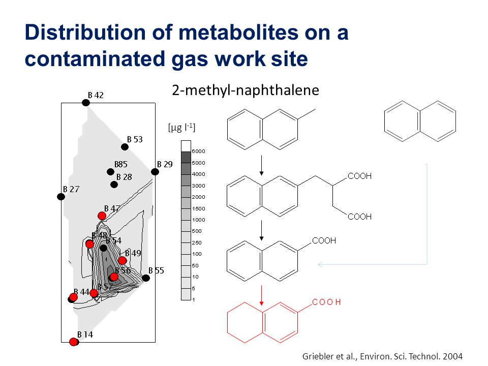 Distribution of metabolites on a contaminated gas work site