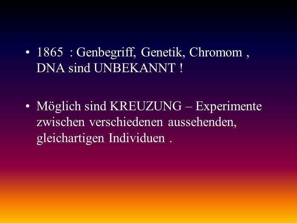 1865 : Genbegriff, Genetik, Chromom , DNA sind UNBEKANNT !