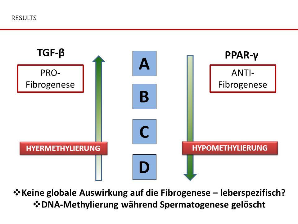 A B C D TGF-β PPAR-γ PRO-Fibrogenese ANTI-Fibrogenese