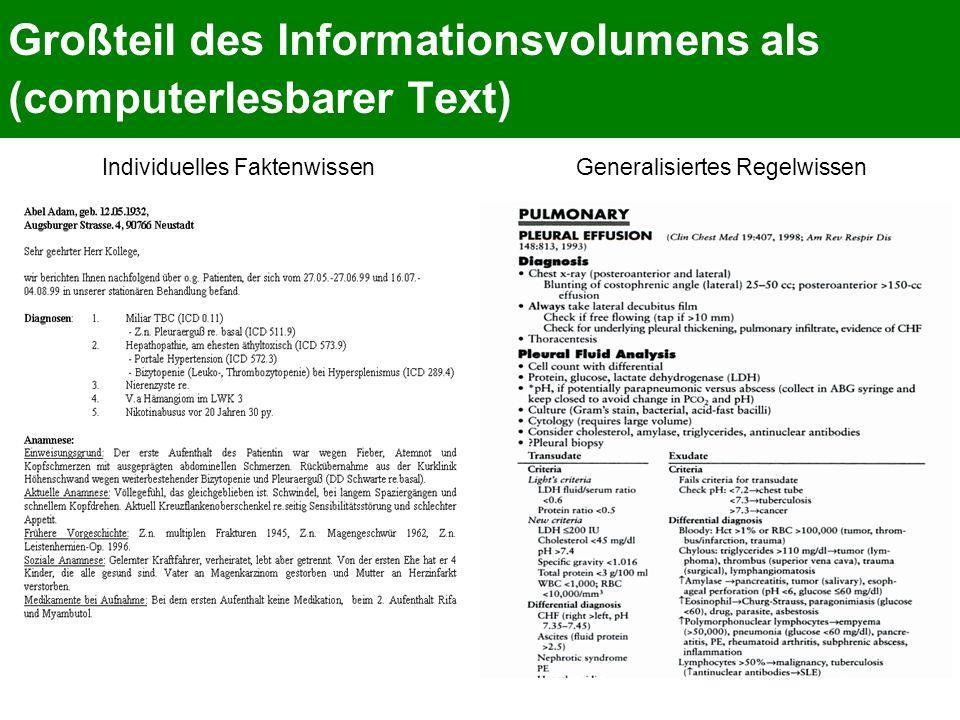 Großteil des Informationsvolumens als (computerlesbarer Text)