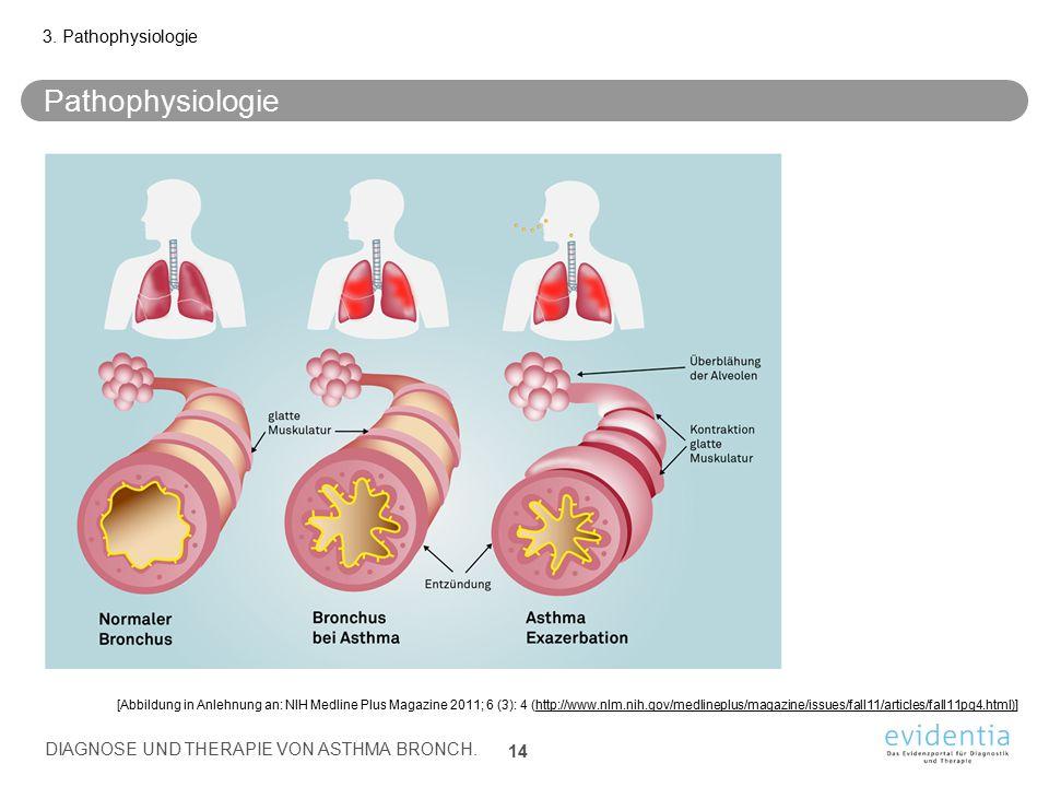 Pathophysiologie 3. Pathophysiologie